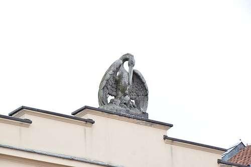 res-sacra-miser-pelikan